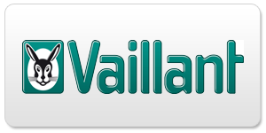 Termenwartung Vaillant
